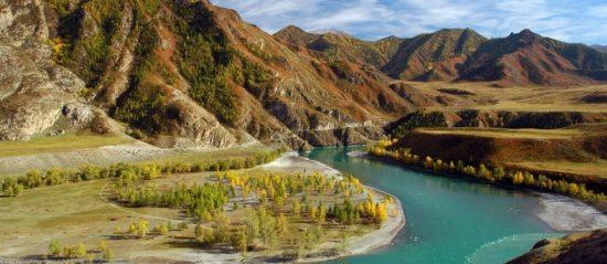 В Алтайском крае рассказали об акции «Урок цифры»