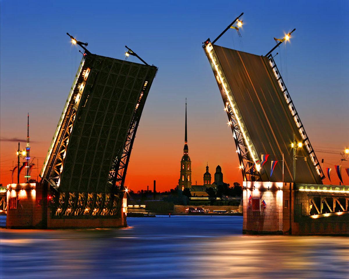 Экспертный совет повопросам цифрового развития создали вЛенинградской области