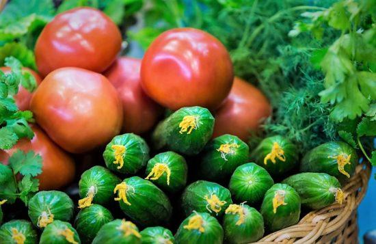 Госзакупки импортных томатов и огурцов ограничат