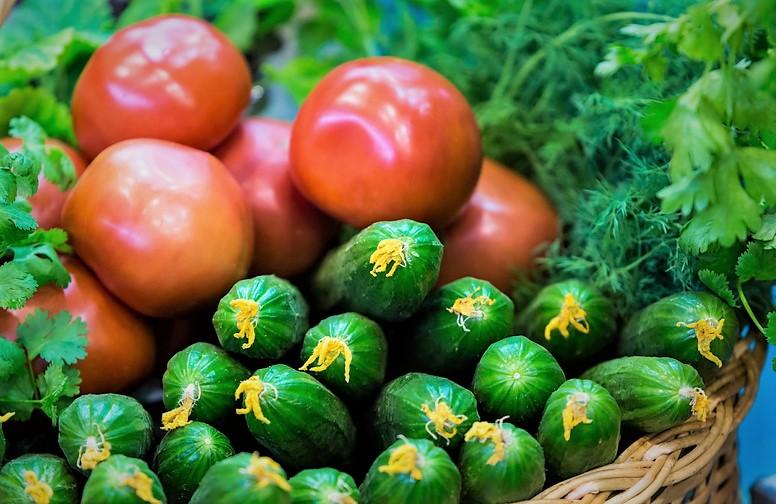 Госзакупки импортных томатов иогурцов ограничат