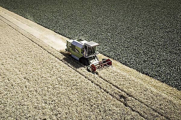 Цифровизации сельского хозяйства поможет карта рынка