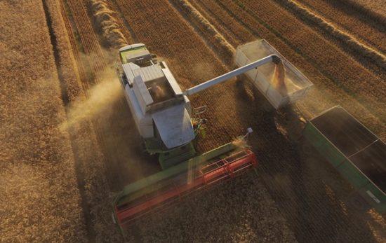 Российские поставщики продовольствия могут получить выгоду из-за торговой войны между США и КНР - эксперт