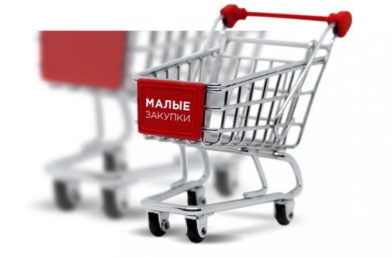 ФАС против обязательности «электронных магазинов» в субъектах РФ