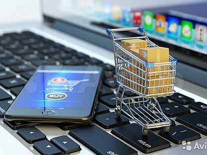 Неконкурентные закупки у МСП по 223-ФЗ можно будет проводить в электронных магазинах