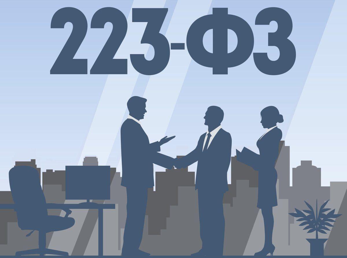 Практические подходы креформе 223-ФЗ определят сами поставщики